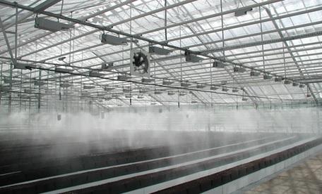 система дождевания